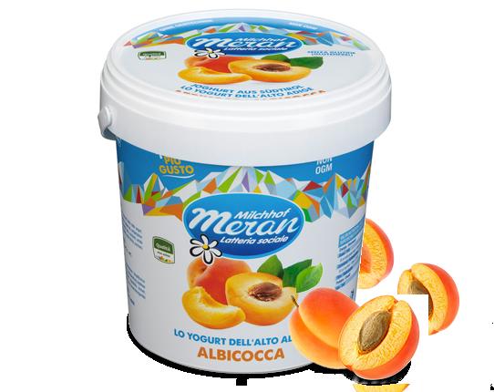 Yogurt classico all'albicocca